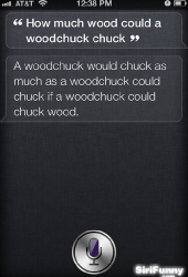 How much wood?