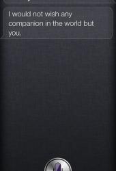 Do you like me Siri?