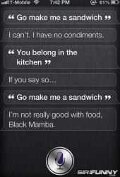 Siri, go make me a sandwich