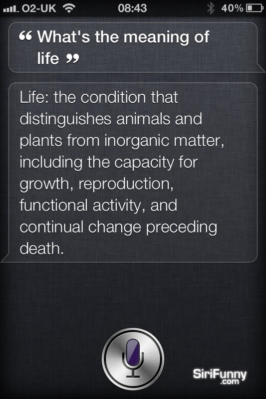 What's the meaning of life, Siri?