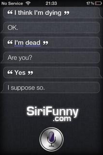 Siri, I think I'm…