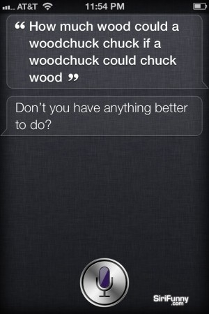 Siri is getting tired of woodchuck