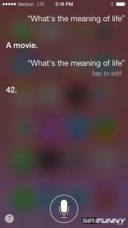 whats-the-meaning-of-life
